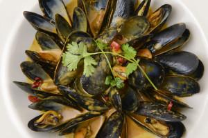 John Harvard's Mussels